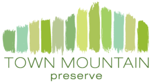 Town Mountain Preserve in Asheville, NC